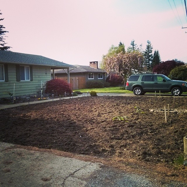 After everything is raked away and a few plants put in, but before we put in the gravel borders or path.