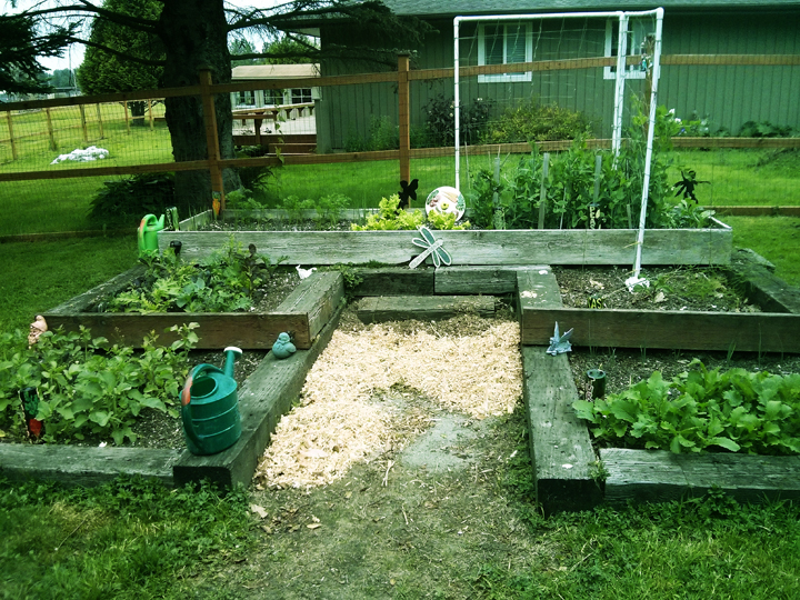 Original raised bed, featuring radishes, red onion, leeks, wild greens, carrots, green onions, lettuce, celery, peas, spinach, asparagus, and turnips.